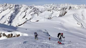Skitourengänger steigen die letzten Meter zum Gipfel des 3503 Meter hohen Sustenhorns hoch. Im Hintergrund links die Kette des Galenstock, Dammastock und Winterberg sowie ganz hinten Mitte die Walliser Alpen mit der Gruppe um den Dom, das Matterhorn und das Weisshorn sowie rechts die Berneralpen mit dem Finsteraarhorn. (Symbolbild)
