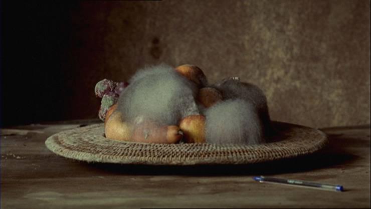 Hübsch hässlich: Der Zahn der Zeit nagt am Video-Stillleben von Sam Taylor-Johnson. Sam Taylor-Johnson, Still Life, 1991 (Filmstill)