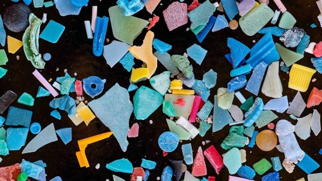 Beim Verwittern und durch Abrieb kann Plastik in winzige Teile zerbröckeln. So gelangt das Mikroplastik auch leicht in die Mägen von Fischen und anderen Organismen.
