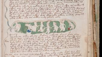 Badende (schwangere?) Frauen – war das «Voynich-Manuskript» gar ein mittelalterliches Abtreibungsmanual?Keystone