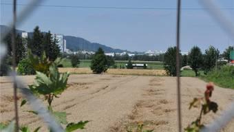 Das rund 40 Hektaren umfassende Gebiet Niderfeld ist die letzte grosse Baulandreserve in Dietikon.