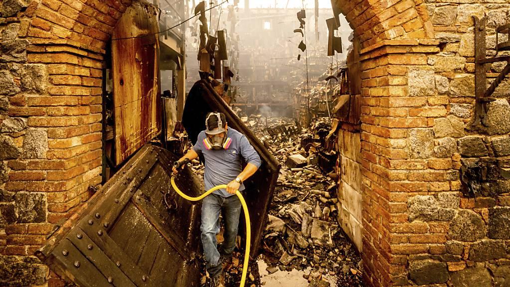 dpatopbilder - Jose Juan Perez trägt einen Wasserschlauch in den Trümmern der Weinkellerei Castello di Amorosa. Foto: Noah Berger/AP/dpa
