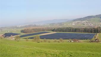 Unerwünscht und nicht bewilligungsfähig: Fotovoltaikanlage auf freiem Landwirtschaftsland (Fotomontage des zurückgezogenen Solarkraftwerk-Projekts in Inwil LU). zvg