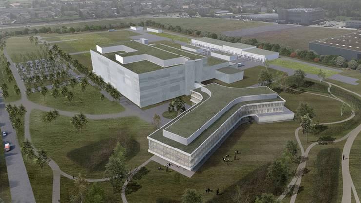 Im Vordergrund zur Aare hin ist das Verwaltungsgebäude geplant, dahinter die eigentliche Biotechproduktion.