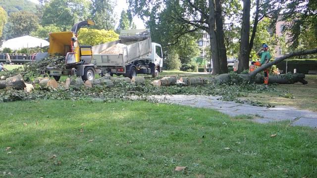 Aufräumarbeiten im Badener Kurpark.
