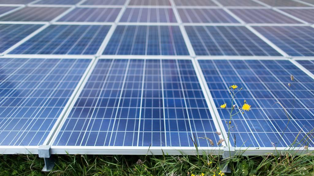 Parlament drückt aufs Tempo beim Ausbau erneuerbarer Energien