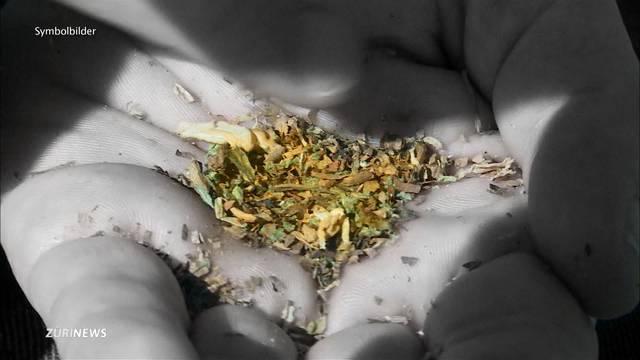 Aufwind für Cannabis-Legalisierung