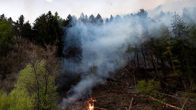 Im Tessin ist am Dienstag die höchste Waldbrandgefahrenstufe erreicht worden. Bereits letzte Woche mussten Löschhelikopter zu einem Brand bei Faido TI ausrücken.