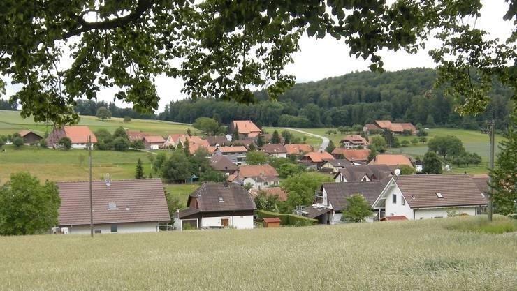 Die Stimmberechtigten von Lüterswil-Gächliwil verabschiedeten eine positive Rechnung.
