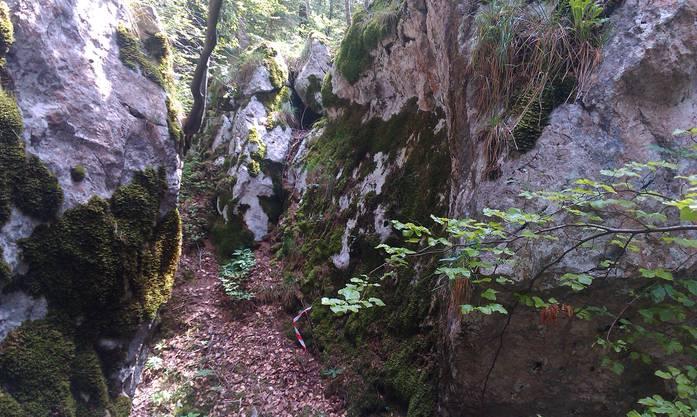 Solche Felspartien sind am Roggen typisch und stellen interessante Herausforderungen dar, weil sie orientierungstechnisch als anspruchsvoll gelten.