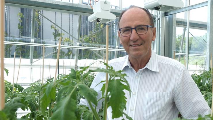 als FiBL-Direktor in einer der Klimakammern des neuen Gewächshauses, wo im Dezember 2019 Tomaten wuchsen. Bild: Thomas Wehrli