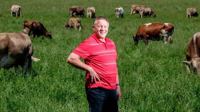 Die Kühe von Bauer Hans Sturzenegger gebaren blinde Kälber. Foto: Mario Heller