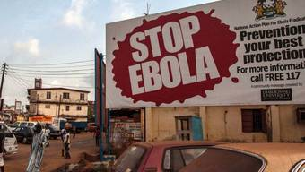 Forschenden konnten einen Antikörper gegen das Ebola-Virus aus dem Blut eines Überlebenden des Ebola-Ausbruchs von 1995 gewinnen und künstlich herstellen. Einer der Antikörper erwies sich als extrem wirksam gegen das Virus.