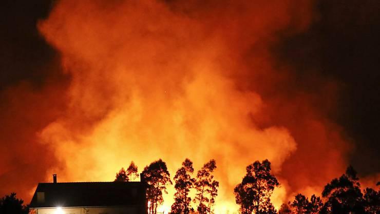 Die Feuer bedrohen zahlreiche Wohnhäuser, starke Winde erschweren das Löschen der Brände.