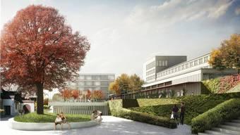 Das Burghaldenprojekt soll jetzt nur mit Doppelturnhalle realisiert werden.