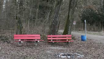 Die Bäume im Bereich der Bänke beim Schützenhaus Niederlenz müssen gefällt werden