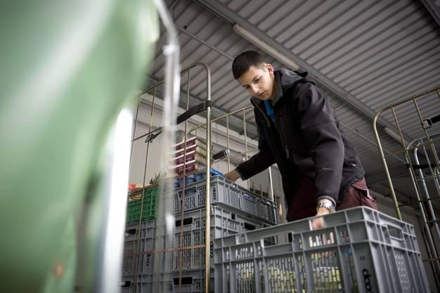 Rund 15 Tonnen Lebensmittel sammelt die Schweizer Tafel jeden Tag ein