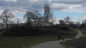 Der Schlieremer Berg ist bei Spaziergängern beliebt. Und das alte Schützenhaus auch bei Sprayern.