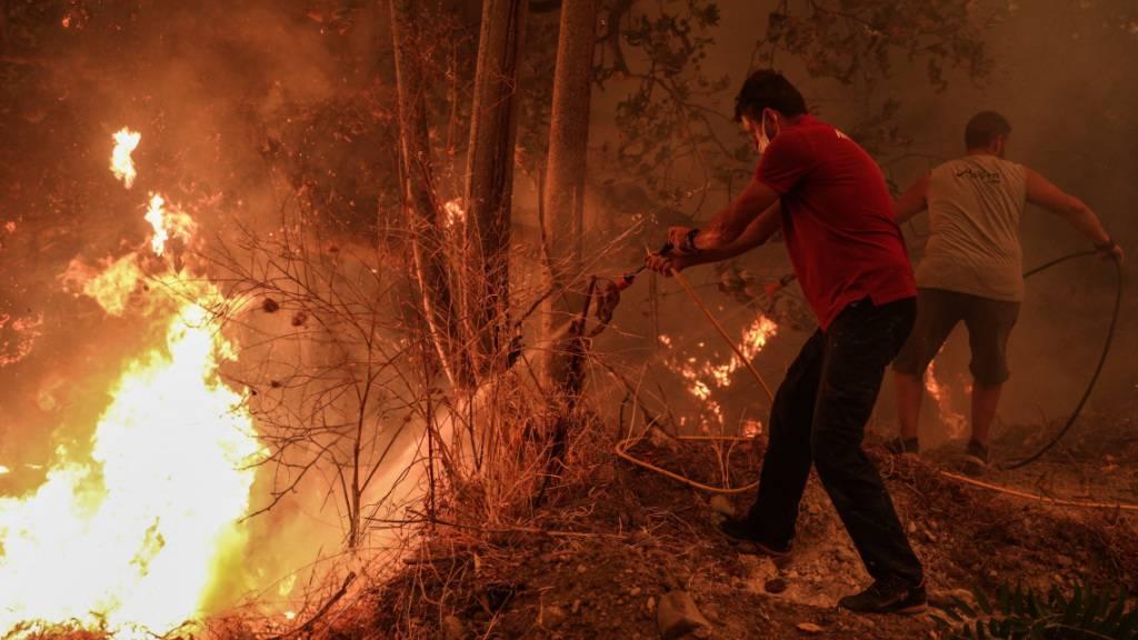 Anwohner auf Euböa verteidigen ihre Dörfer gegen die Flammen
