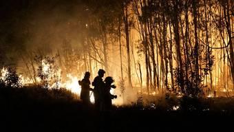In Australien toben derzeit mehr als 120 Buschfeuer - nun ist dabei im Bundesstaat Queensland ein junger Helfer ums Leben gekommen