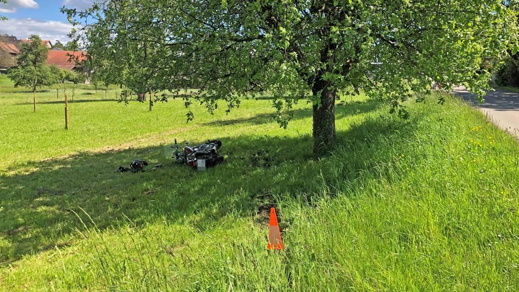 Töfffahrer prallt in Baum wird dabei verletzt
