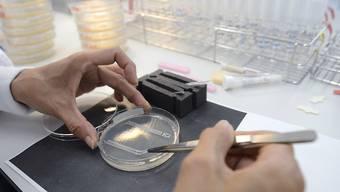 Gesundheitsdirektor Thomas Heiniger versprach sich vom Forschungsprojekt Erkenntnisse zur Behandlung chronischer Krankheiten. (Symbolbild)