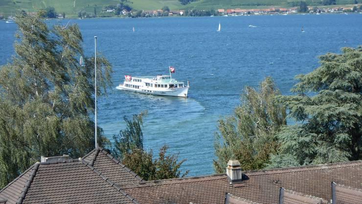 Blick vom Ringturm auf den Murtensee (Schiff 'Berna')