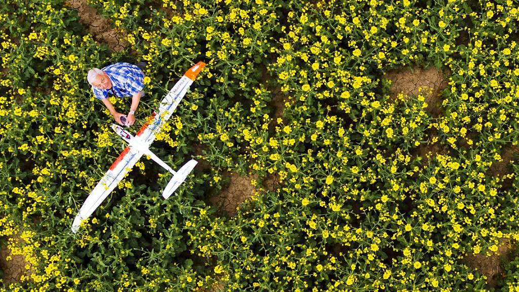 Gecrashtes Modellflugzeug in einem Rapsfeld: Der Alleingang bei den Regeln für Modellflugzeuge könnte das Verhältnis der Schweiz mit der EU weiter beschädigen. (Archivbild)