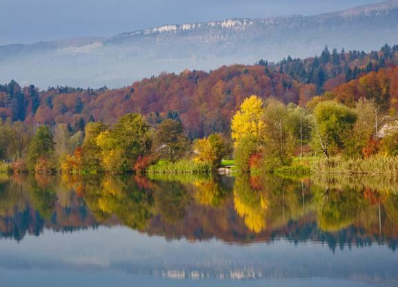 Herbst an der Aare.