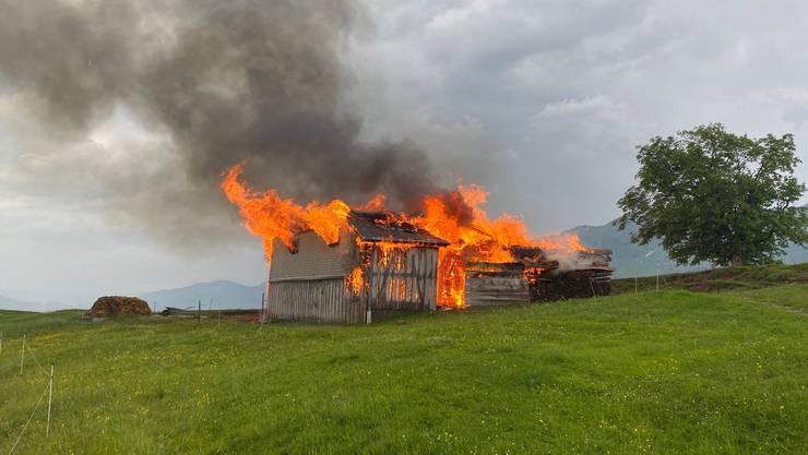 Der Stall brannte vollständig ab. Die Tiere starben in den Flammen.