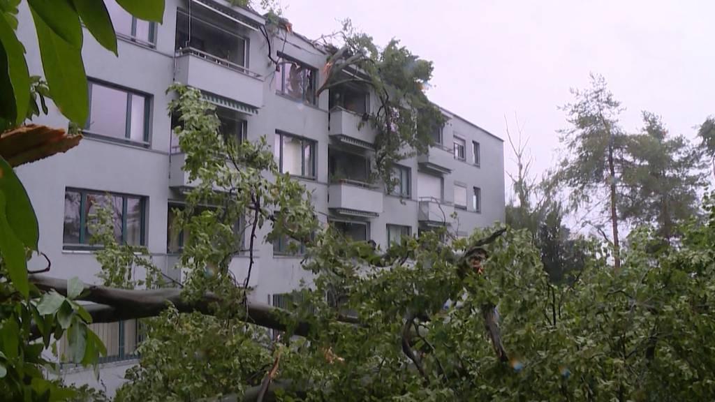 Grosse Sturmschäden in Zürich: Umgefallene Bäume und überflutete Strassen