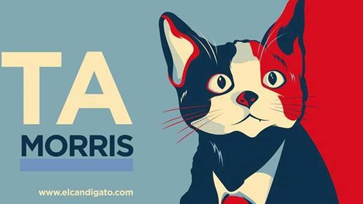 Eine der zahlreichen Fanarbeiten für Kater Morris – angelehnt an das Barack-Obama-Poster «Hope».