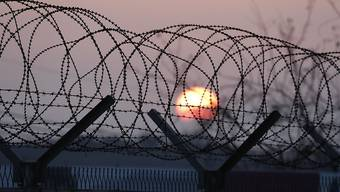 Stacheldraht in der demilitarisierten Zone zwischen Nord- und Südkorea. (Symbolbild)