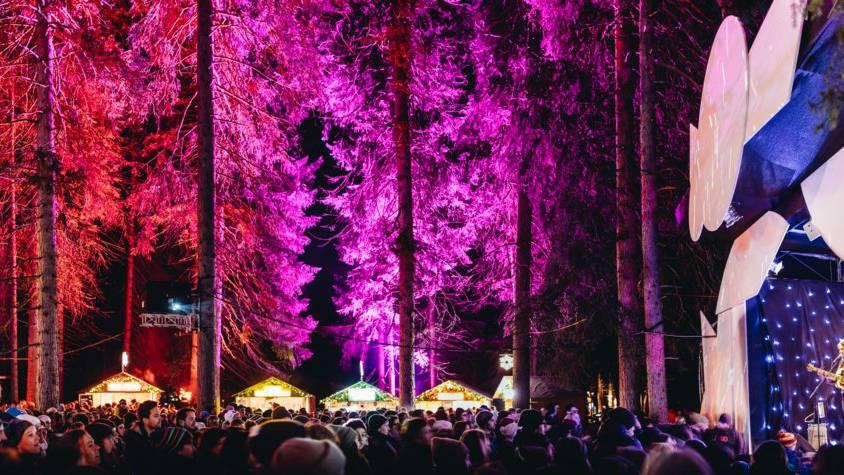 Der Zauberwald auf der Lenzerheide