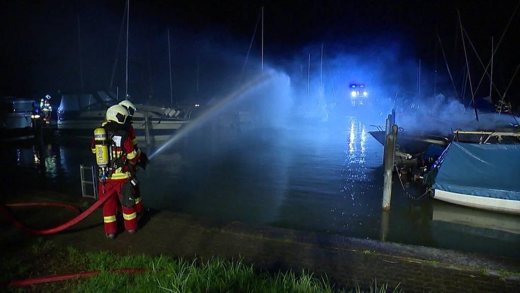 Millionenschaden: Grossbrand in Lachen zerstört zehn Schiffe
