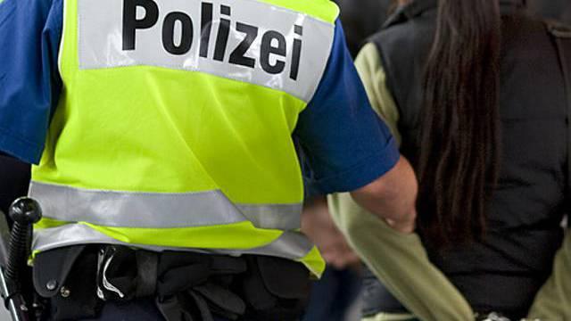 Polizei erfolgreich (Archiv)