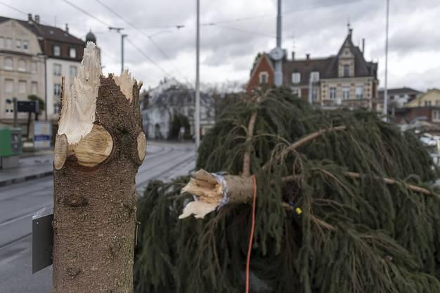 Ein wegen des Sturms Burglind umgestürzter Weihnachtsbaum liegt auf dem Wettsteinplatz in Basel am Mittwoch, 3. Januar 2018.