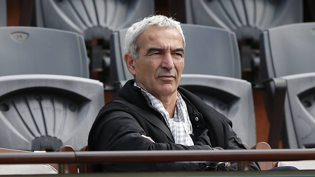 Domenech in Nantes entlassen