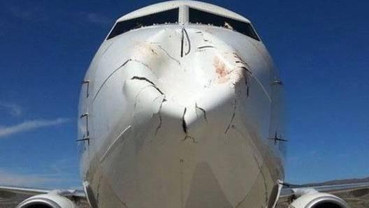 So sieht ein Flugzeug aus, nachdem es mit einen Vogelschwarm kollidierte.