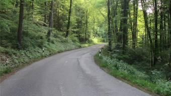 Die Strasse zwischen Sulz und Mönthal.
