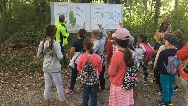 Daniel Kleger vom Forstbetrieb Niederamt erklärt den Kindern den Aufbau vom Wald