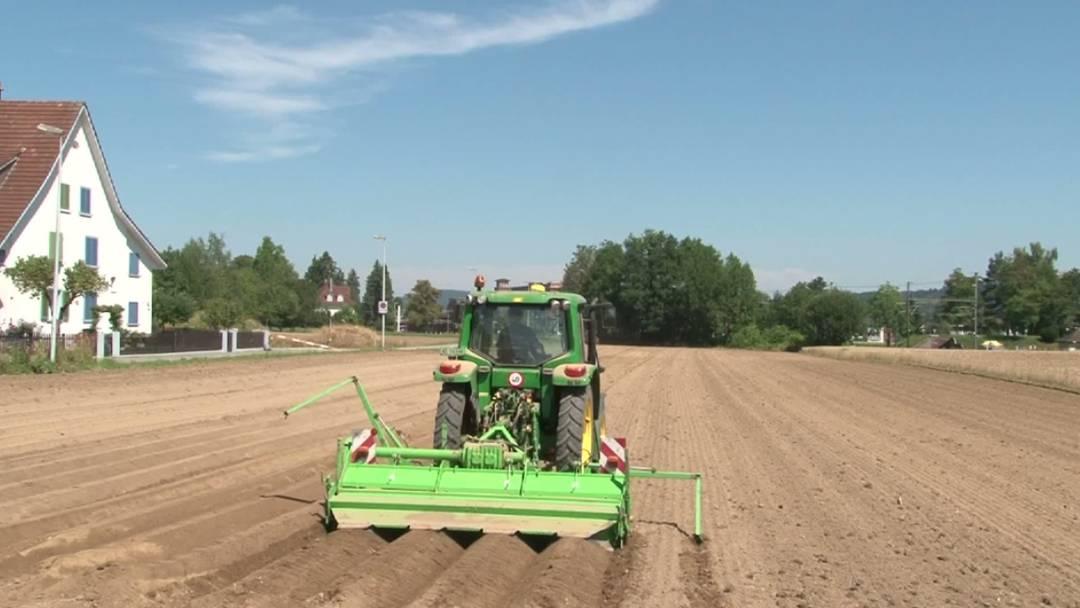 Aargauer Bauern befürchten Ernteausfälle