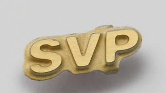 Die SVP sucht einen wählbaren Bundesratskandidaten