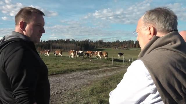 Johann Schneider-Ammann zu Besuch bei den hornlosen Milchkühen