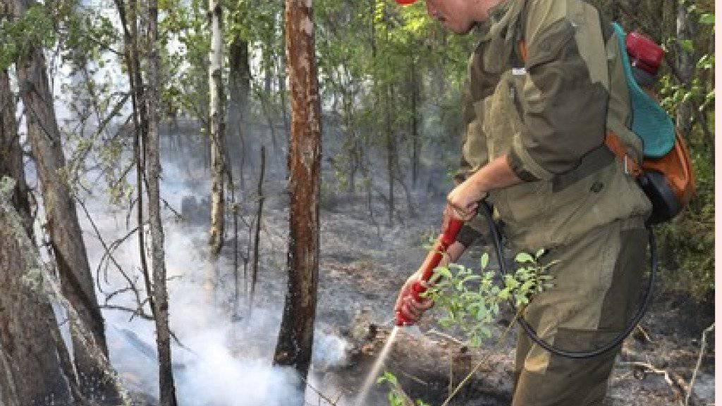Die Feuerwehr ist auch im Einsatz in der Region Krasnojarsk. Am Samstag zählten die Behörden insgesamt noch 174 Waldbrände auf einer Fläche von etwa 125'000 Hektar.