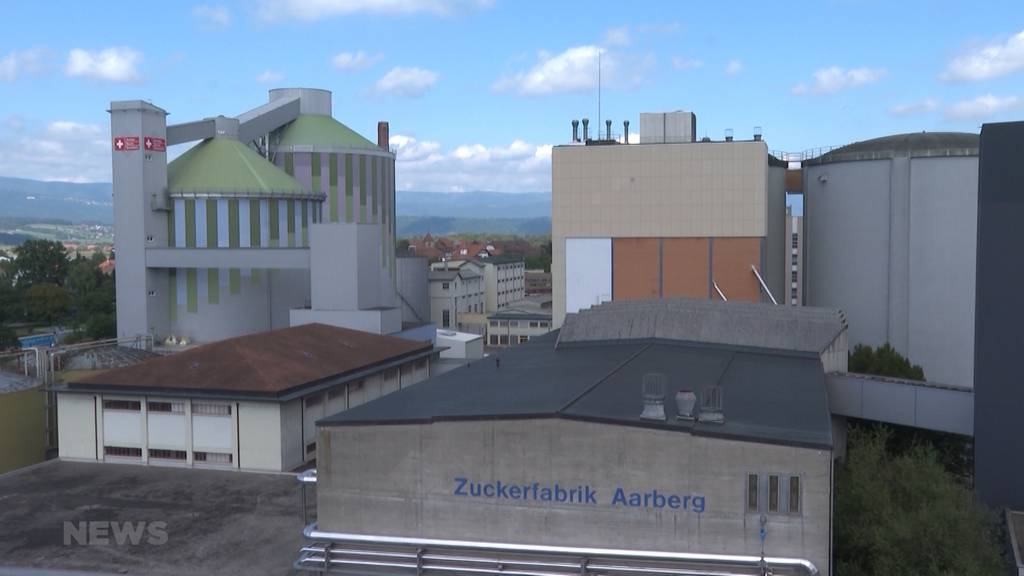 Dank Holzkraftwerk in Aarberg spart Zuckerfabrik 16'000 Tonnen CO2