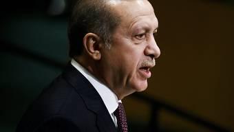 Nach dem Votum des Sicherheitsrats kann der türkische Präsident Erdogan den Ausnahmezustand im Land verlängern. (Archiv)