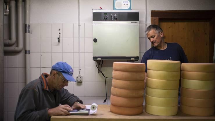 Jakob Peng, links, addiert die Menge an Käse, Senn Martin Capaul liest das Gewicht vom Käse ab.