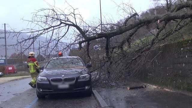 Stürmisches Unwetter hinterlässt Schäden