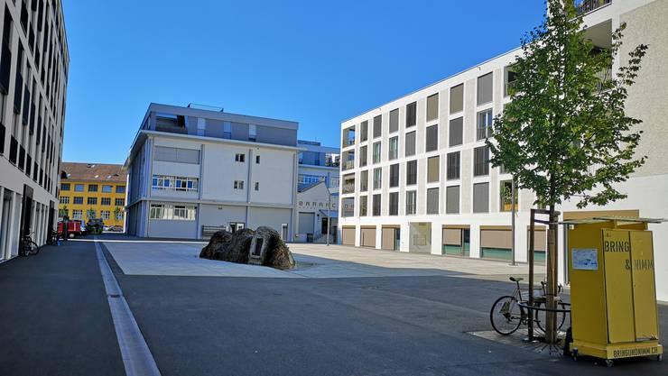 Irène Kälin: «Der Markus-Roth-Platz» gleicht einer Betonwüste, inmitten der grauen Gebäude mit einem sich kaum begrünenden, aber genialen Kunst-Brunnen.»